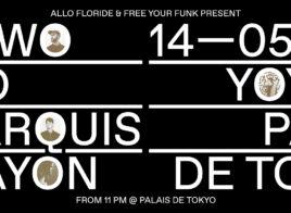 Recap - STWO & POMO & LEMARQUIS & CRAYON au YOYO