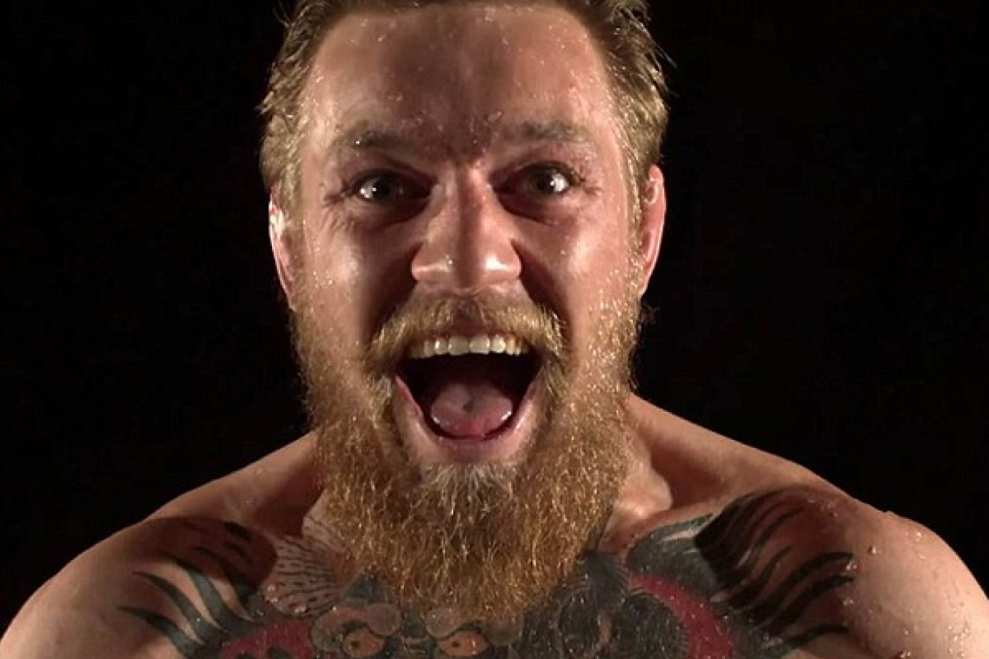 Conor McGregor - conseils bar fight