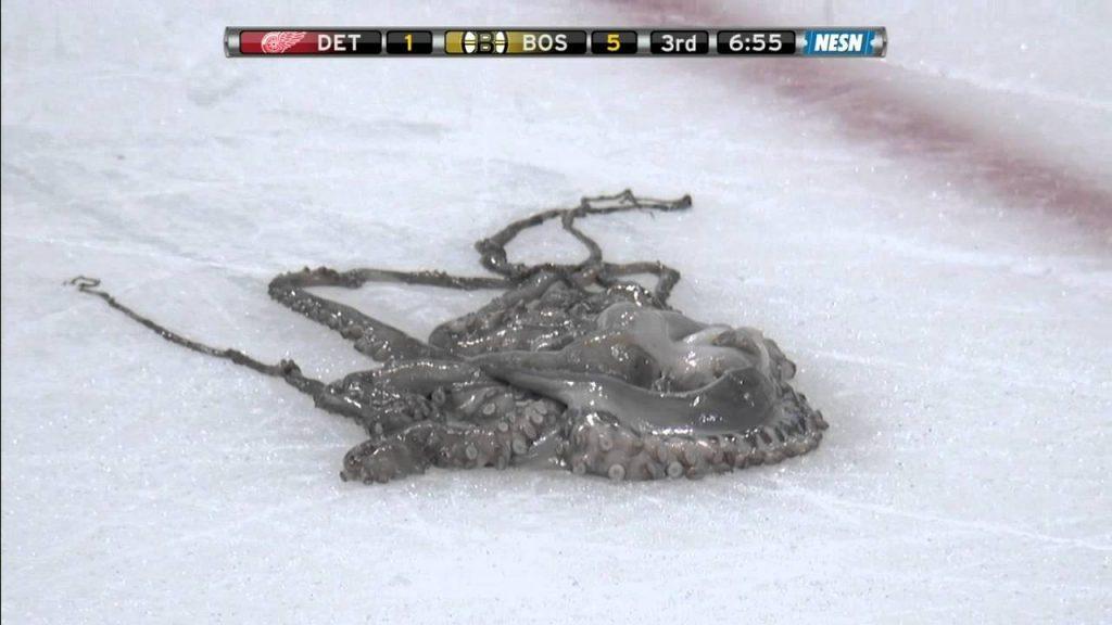 detroit-pieuvre-NHL-3