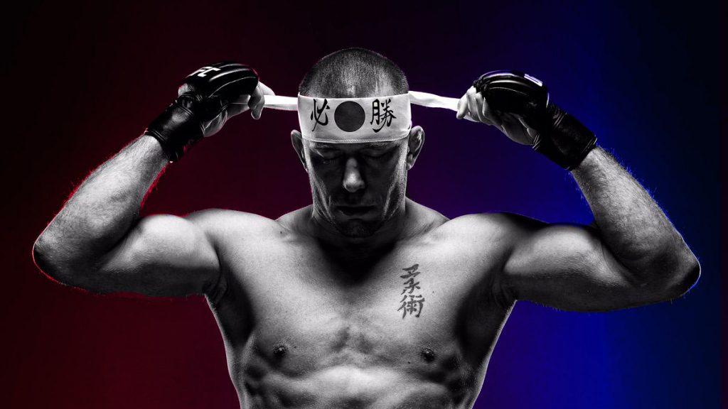Georges St-Pierre UFC 217 Bisping