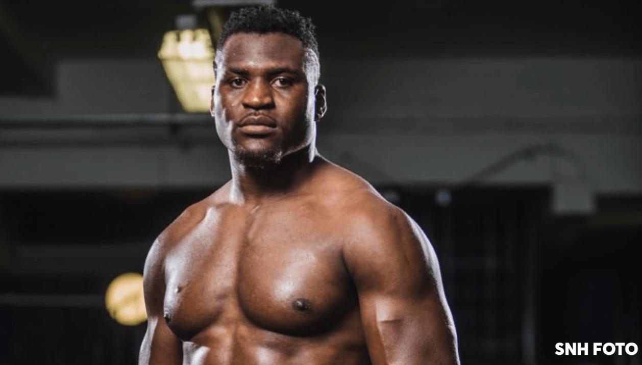 Francis Ngannou UFC 218 parcours