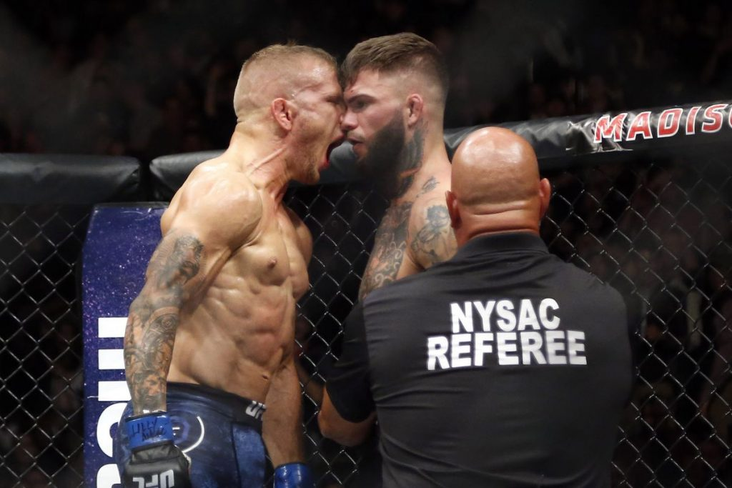 The Rematch is ON : TJ Dillashaw vs Cody Garbrandt II à l'UFC 227