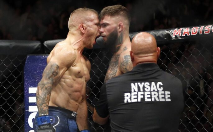 The Rematch is ON : TJ Dillashaw vs Cody Garbrandt II à l'UFC 227