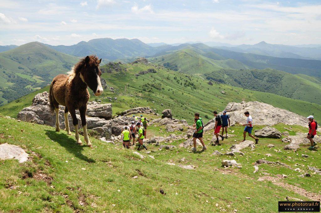 La course des Crêtes d'Espelette : entre sport et féria