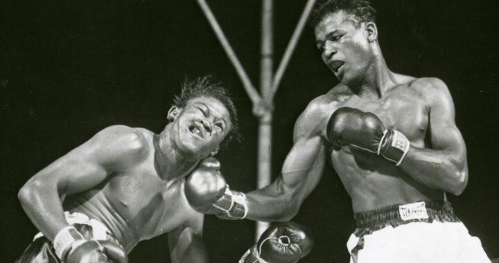 Sugar Ray Robinson - Hommage au plus grand boxeur de tous les temps
