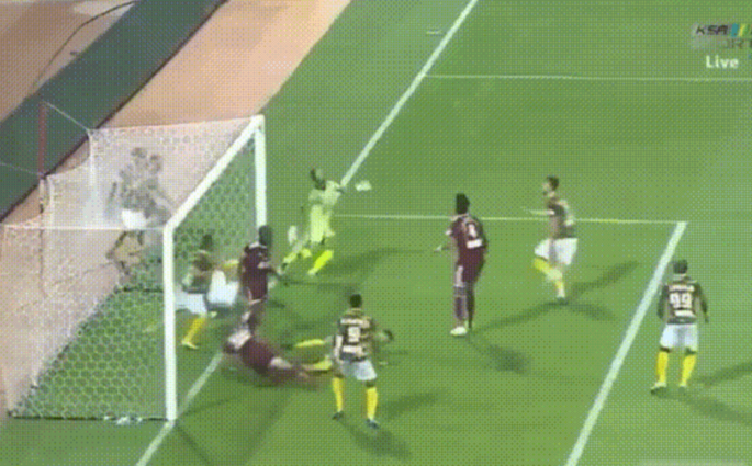 Saudi Arabian Professional League
