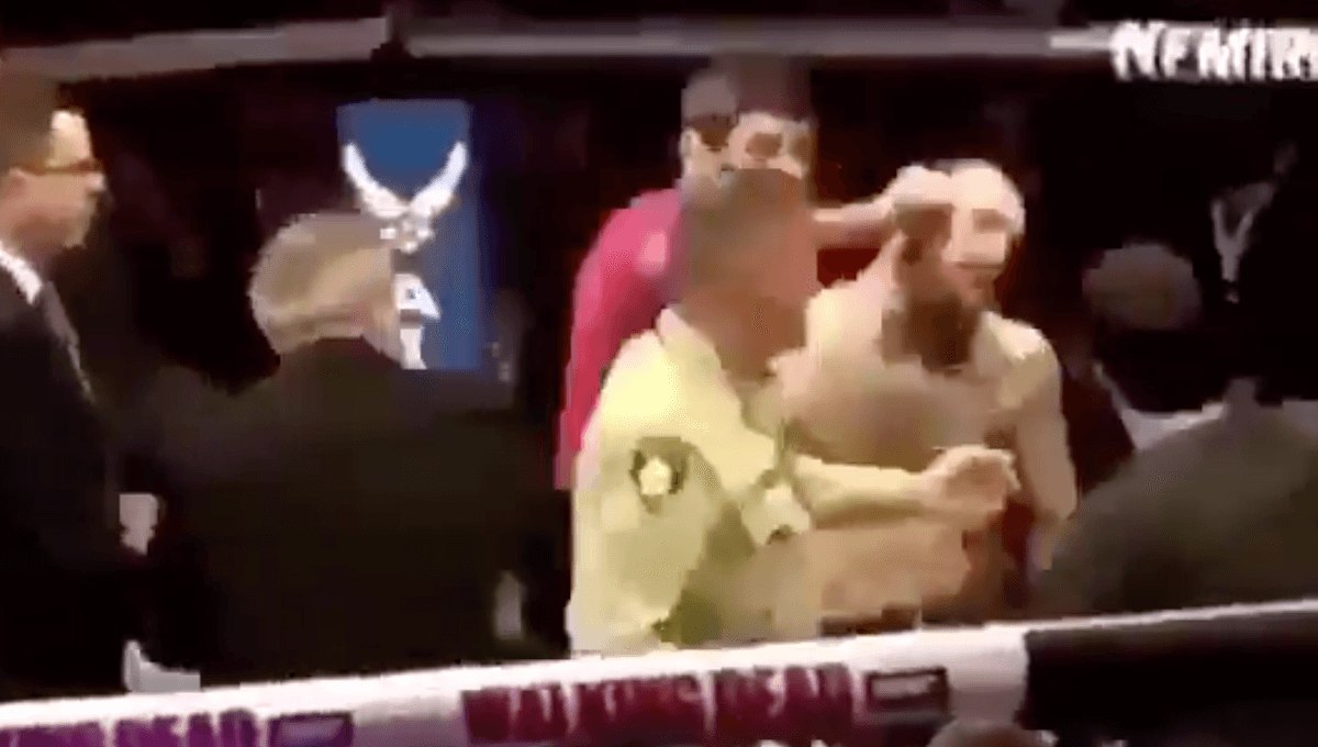 UFC 229 Khabib MGregor Brawl