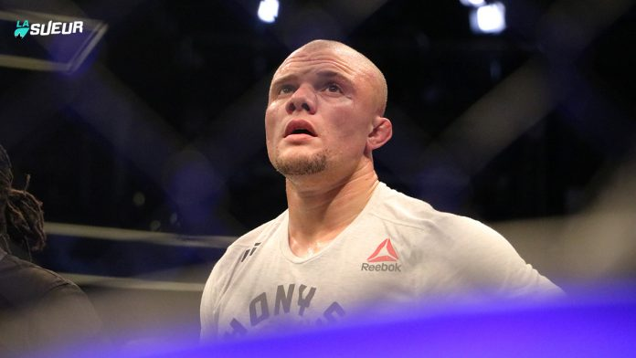 Anthony Smith UFC 235