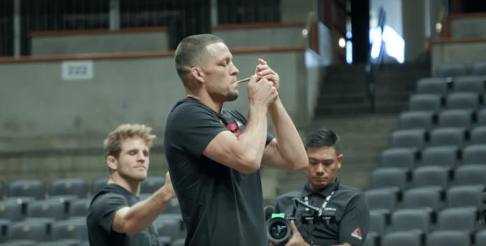 Nate Diaz UFC 241 joint