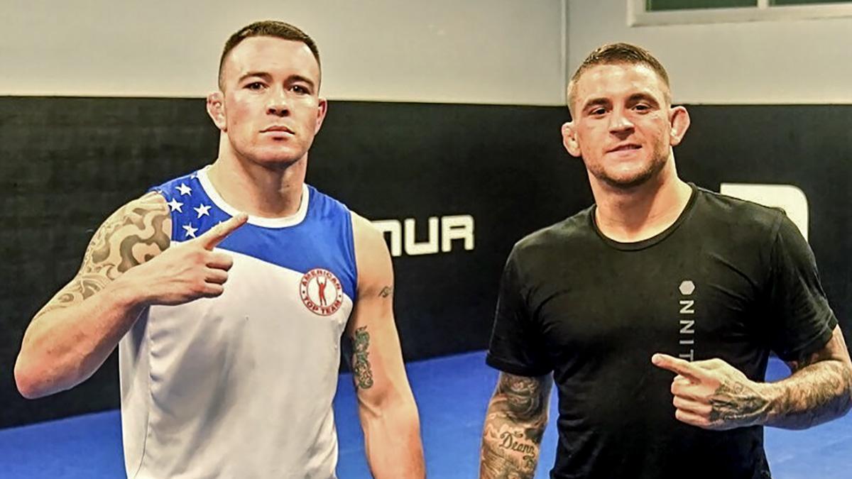 UFC - Colby Covington