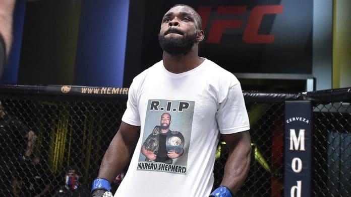 UFC Fight Night: Pitolo v Stewart